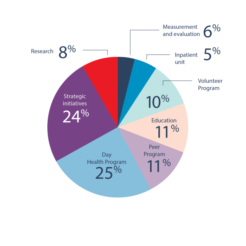 How Casey House Foundation Grants were spent: Measurement and evaluation 4%; Day health programs 24%, Inpatient 5%, Education 11%, Volunteer 10%, Peer 11%, Research 8%, Strategic initiatives, 24%
